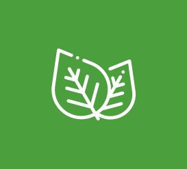 Pau Tempo - Site de votre Centre Commercial - Formation Euralis anglais
