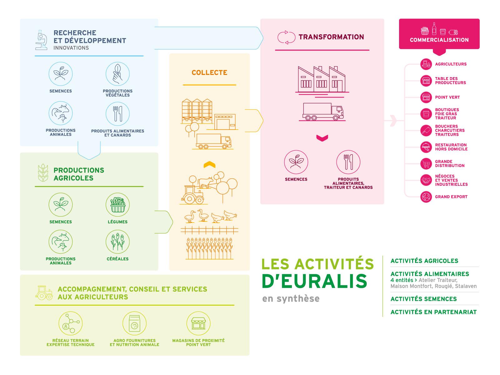 Groupe Euralis - Coopérative Agricole et agroalimentaire - Synthèse des activités