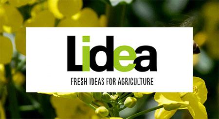 Groupe Euralis - Activités semences - Lidea