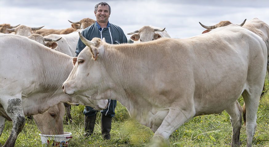 Local economic development actor - photo of the farmer with his cattle